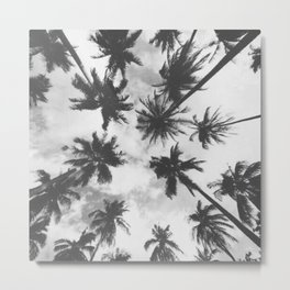 blck and white palm trees Metal Print