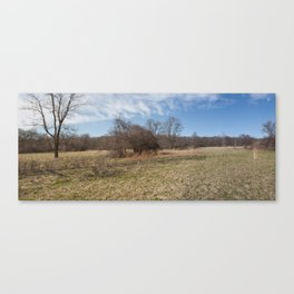 Spring Forest Field Canvas Print