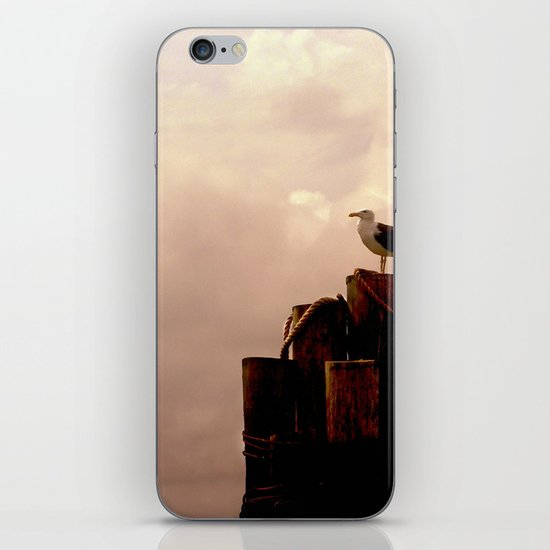 A Place By the Sea iPhone & iPod Skin