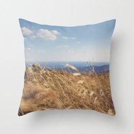 Moment of Zen Throw Pillow