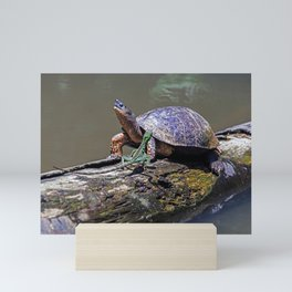Lizard and River Turtle at Tortuguero Mini Art Print