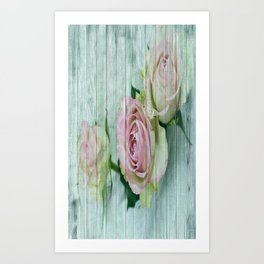 Shabby Chic Pink Roses On Blue Wood Art Print