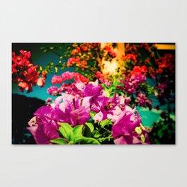 Flowerers Canvas Print