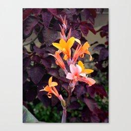 Flower Pic 2 Canvas Print