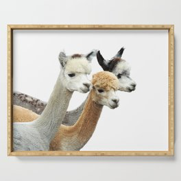 Alpaca Trio Serving Tray