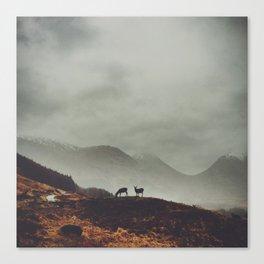 Etive Pass Canvas Print