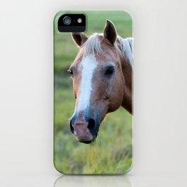 Silver III iPhone Case