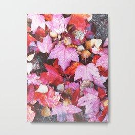 Acadia Fall Metal Print