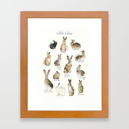 Rabbits & Hares Framed Art Print