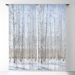 March Sun Over The Snow-Covered Birch Grove, Long Blue Shadows Sheer Curtain