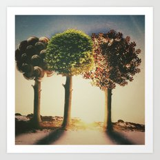 three seasons  Art Print