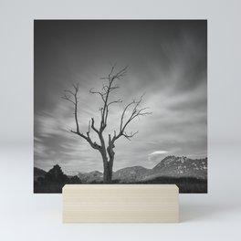 Mountains tree. Spring sunset Mini Art Print