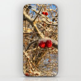 The Frosty Day iPhone Skin