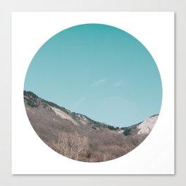 Circle Cut - I - Earth Waves Canvas Print