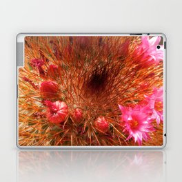 Red Cactus in Bloom Laptop & iPad Skin