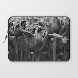 'Dying Tulip Field' Laptop Sleeve