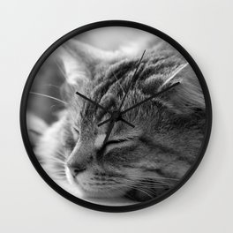 Sleeping cat, cat photography, black & white. Wall Clock