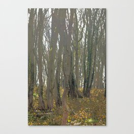 With an eye made quiet Canvas Print