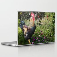 rooster Laptop & iPad Skins featuring Rooster by Sean Foreman