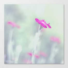 Dreaming in fuchsia Canvas Print