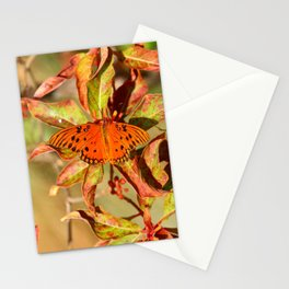 Butterfly In The Glades - Gulf Fritillary Stationery Cards
