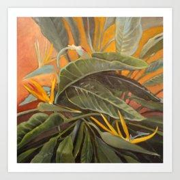 Bird of Paradise 2 Art Print