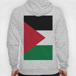 Flag of Palestine Hoody
