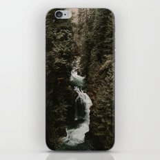 Forest Fall iPhone & iPod Skin