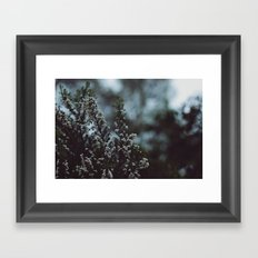 like winter Framed Art Print