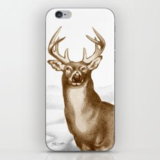 White-tailed Stag 2 iPhone Skin