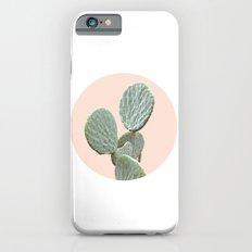 Cactus in a Circle I Slim Case iPhone 6s