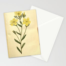 Flower 312 linum flavum Yellow Flax19 Stationery Cards