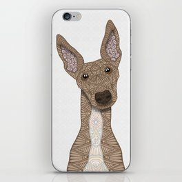 Cute Fawn & White Greyhound iPhone Skin