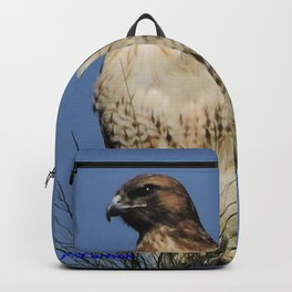 Red-Tailed Hawk on Watch at Foothill and B Street Backpack