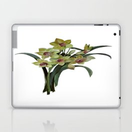 Lent Lily Isolated Laptop & iPad Skin