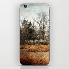 frosty morning iPhone & iPod Skin