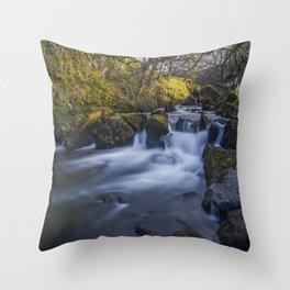 Nant Ffrancon Pass River Throw Pillow