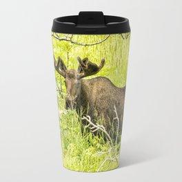 Bull Moose in Kincaid Park, No. 2 Travel Mug