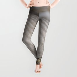 Sea shell on the beach Leggings