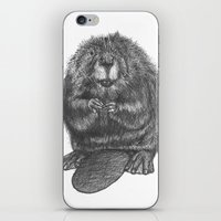 beaver iPhone & iPod Skins featuring Beaver by Nasir Nadzir