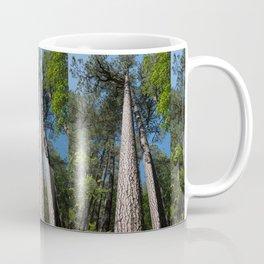 Tall Pine Trees in Mt. Lemmon Coffee Mug