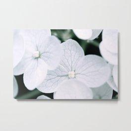 Dainty Flowers Metal Print