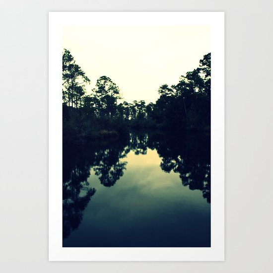 Reflection Swamp Art Print