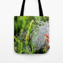 Beauty Between The Trees Tote Bag