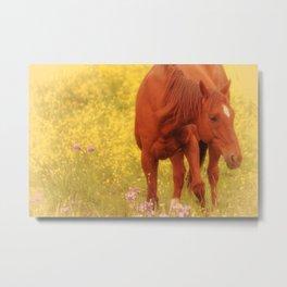 Wild as the Flowers Metal Print