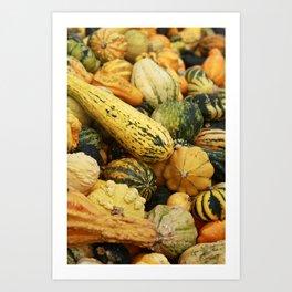 gourds 3 Art Print