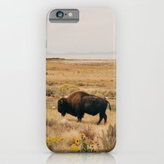Bison Bull on Antelope Island Slim Case iPhone 6s