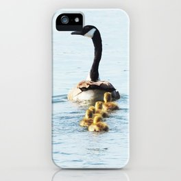Mamma Goose and her Goslings iPhone Case