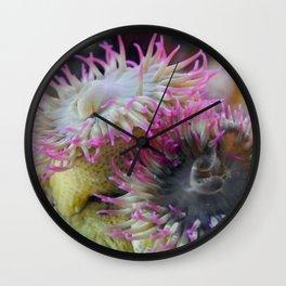 Anemone Pom-Poms Wall Clock