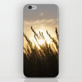Ranchos Palos Verdes iPhone Skin